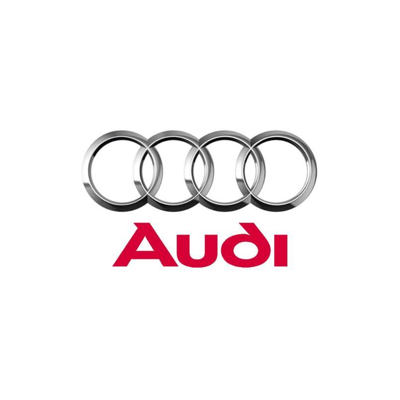 Audi A4 B7 Automatte (4 Stück pro Set)
